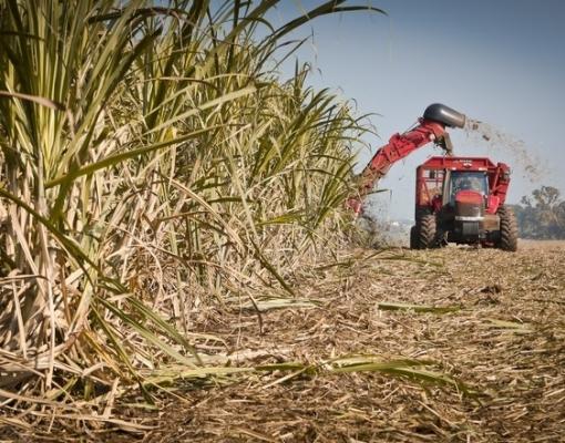 Produção agroindustrial desabou em abril no país, mostra FGV Agro